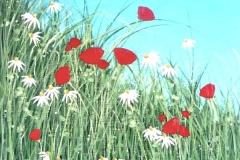 poppygrass-tami