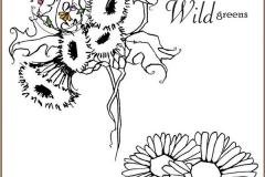 wildfairy-3